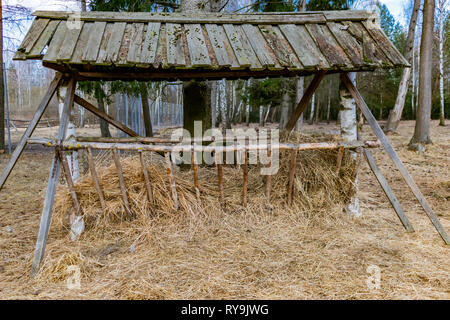 wooden feeder for forest animals deer, elk in the park - Stock Photo