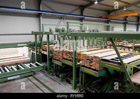 Lumber on conveyor belt in factory - Stock Photo