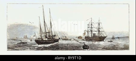 Hm.S.  Enchantress  H.M.S.  Fire Queen Admiralty Yacht H.M.S Orontes Answering Signals from the Flag Ship, Engraving 1879, Funeral of the Late Prince Louis Napoleon - Stock Photo