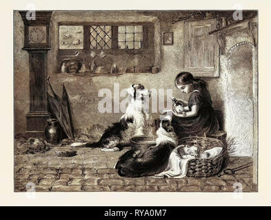 The Orphans, a Drawing in the Dudley Gallery, 1870 - Stock Photo