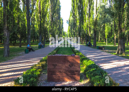 Kiev Babyn Yar Park Leading Lines Tree Alley with Monument of Jewish People Killed During World War II - Stock Photo