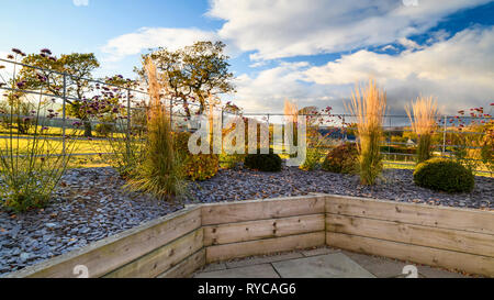 Autumn colours in beautiful, private garden, Yorkshire, England, UK - stylish, contemporary design, hard landscaping & planting in timber raised beds. - Stock Photo