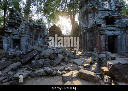 Woman visiting ancient Ta Prohm temple in Angkor Archaeological area in Cambodia at sunset - Stock Photo