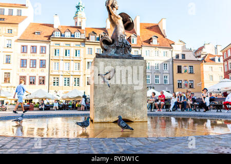 Warsaw, Poland - August 22, 2018: Historic cityscape with architecture buildings and mermaid water fountain in old town market square with birds pigeo - Stock Photo