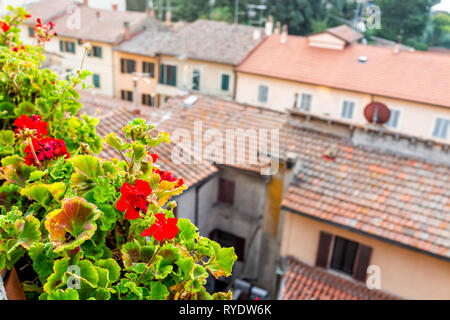 Chiusi, Italy rooftop roof closeup tiles with historic old medieval buildings of town village orange colors in summer with foreground of red geranium  - Stock Photo