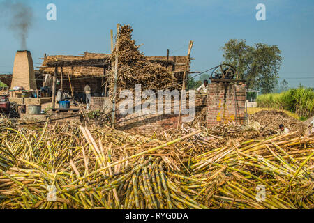 HIMACHAL PRADESH, INDIA.  traditional cane sugar plant in rural India - Stock Photo