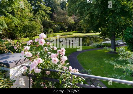 Pink flowers on balcony railing - Stock Photo