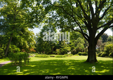 Lawn and trees around pond - Stock Photo