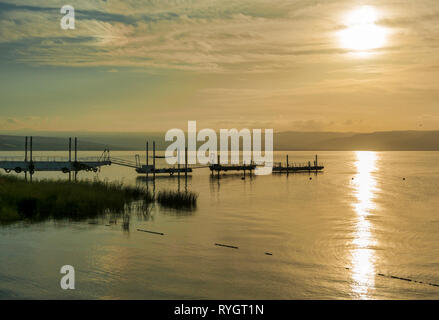 sunset over the lake of galilee or lake tiberias, know from the bibe, where Jesus walked on the water - Stock Photo