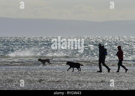 Walkers and two dogs silhouetted against the sea as they cross a beach at low tide on a windy day, Three Cliffs Bay, The Gower, Wales, UK - Stock Photo