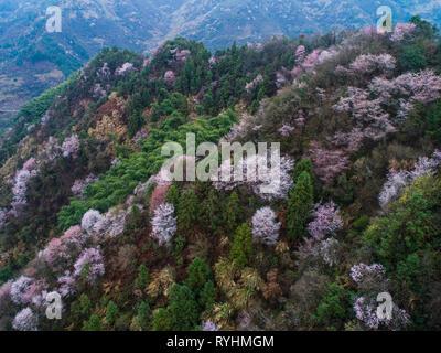 Jiande. 14th Mar, 2019. Aerial photo taken on March 14, 2019 shows cherry blossoms at Wuxiang Village of Sandu Township in Jiande, east China's Zhejiang Province. Credit: Xu Yu/Xinhua/Alamy Live News - Stock Photo