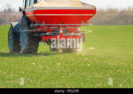 Unrecognizable farmer in agricultural tractor is fertilizing wheat crop field with NPK fertilizer nutrients - Stock Photo