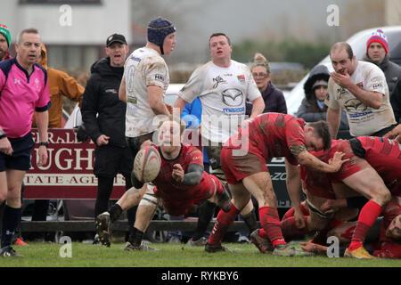 Nantgaredig RFC v Clwb Rugbi Caerdydd - Stock Photo