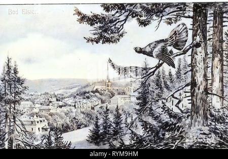 Paintings in Saxony, Views of Bad Elster, Tetrao urogallus (illustrations), 1905, Vogtlandkreis, Bad Elster, Bad Elster mit Auerhahn, Germany - Stock Photo