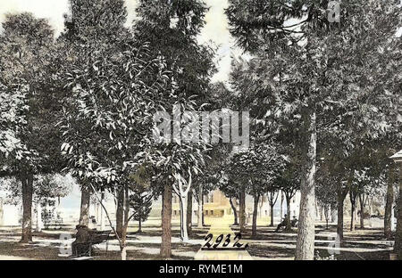 Squares in the United States, Trees in Oregon, Buildings in Eugene, Oregon, 1906, Eugene, Ore., The Plaza - Stock Photo