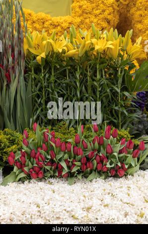 Floristic decoration with yellow lilies and red tulips - Stock Photo
