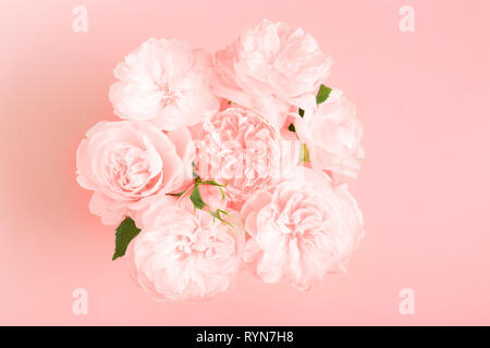 Festive flower composition on pink background. Overhead view - Stock Photo