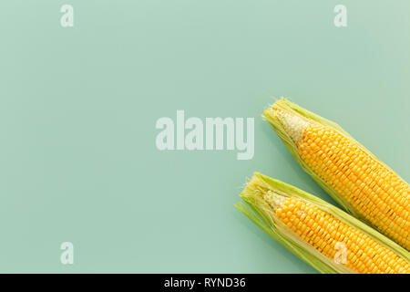 corn cob on pastel green glass sheet photo from above - Stock Photo