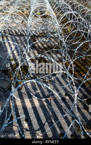 6 rows of very sharp high security razor barbed wire rolls laying on the ground next to a metal Palisade Security Fencing for added security - Stock Photo