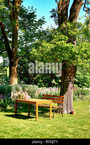 Wooden table and bench on an old tree in the garden. - Stock Photo