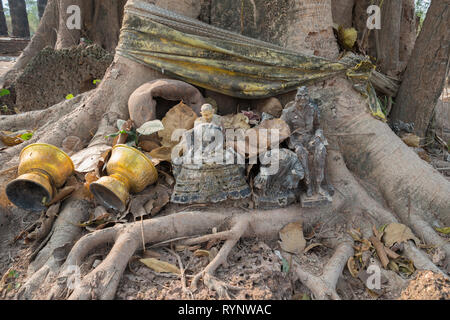 Offerings to Buddha under tree - Stock Photo