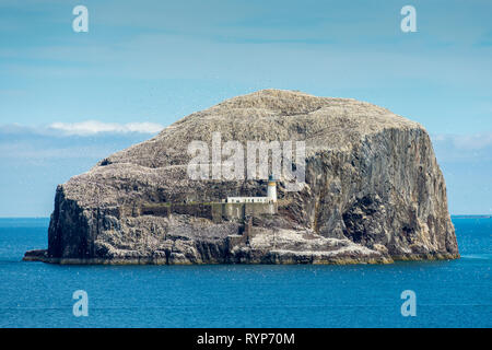 The Bass Rock from Tantallon Castle.  Near North Berwick, East Lothian, Scotland, UK - Stock Photo