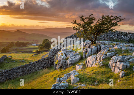 Sunset at Winskill Stones Ribblesdale Yorkshire Dales England