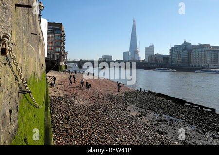 View of River Thames at low tide, Shard building, people mudlarking near Queenhithe and algae covered wall in London EC4 England UK  KATHY DEWITT - Stock Photo