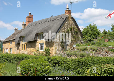 Traditional Cotswold Thatched Cottage and garden with Climbing plants on the Wall - Stock Photo