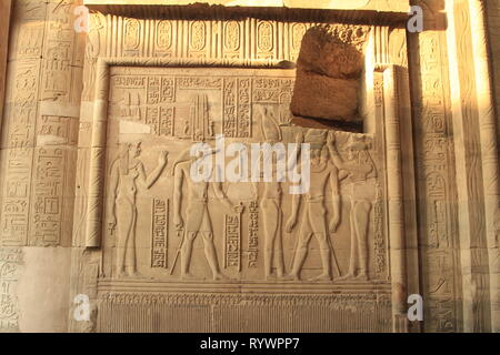 Relief panel of crocodile headed god Sobek, Temple of Kom Ombo, West Bank of the Nile, Upper Egypt, North Africa, Middle East - Stock Photo