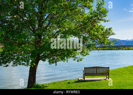 Empty park bench seat under  tree looking out over Lake Dunstan, Cromwell New Zealand - Stock Photo