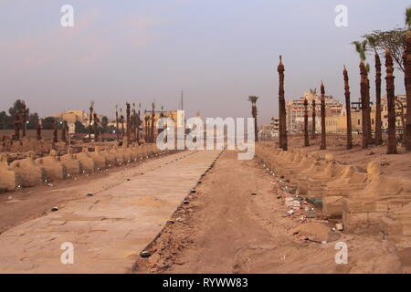 Avenue of the Sphinxes near sunset, Luxor Temple, Luxor, Upper Egypt - Stock Photo