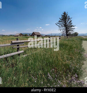 A country scene from Mormon Row in Grand Teton National Park.  Old barns on a country farm in an open field - Stock Photo