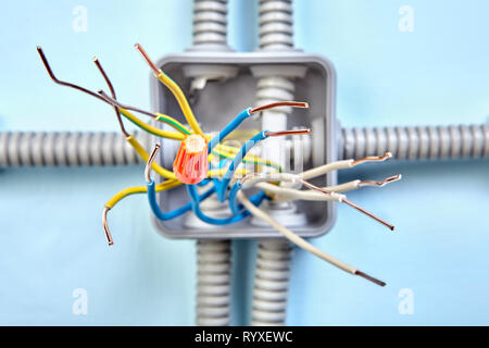 Fabulous Diagram Of Copper Wiring Of Junction Box Exposed Wire Ends Close Wiring Digital Resources Anistprontobusorg
