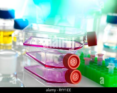 Flask containing stem cells, cultivated in red growth medium in the laboratory. - Stock Photo