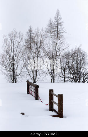 Beautiful winter landscape, vertical landscape with deciduous trees in the background and visible snowflakes on the wooden fence in the foreground - Stock Photo