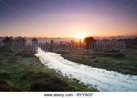 Sunrise over wet area on Ober Heath, near Brockenhurst, New Forest National Park, Hampshire, England, UK, October 2017 - Stock Photo