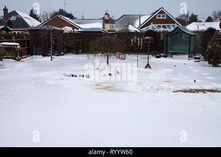 Snow covered lawn and garden with housing beyond with Common blackbird Turdus merula, Fieldfare Turdus pilaris and Common starling Sturnus vulgaris fe - Stock Photo