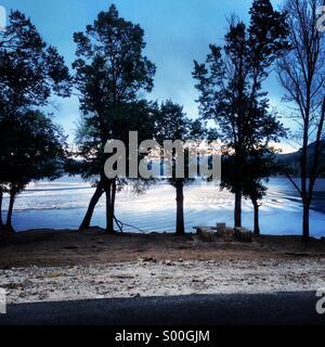 Sunset through pine trees, lake Dayat Aoua, Middle Atlas, Morocco - Stock Photo