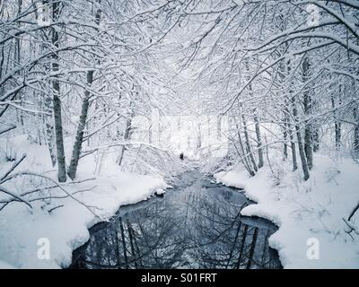 Snow covered trees along creek in winter wonderland landscape. - Stock Photo
