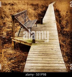 A single empty bench on a walkway over seaside reeds in Scandinavia - Stock Photo