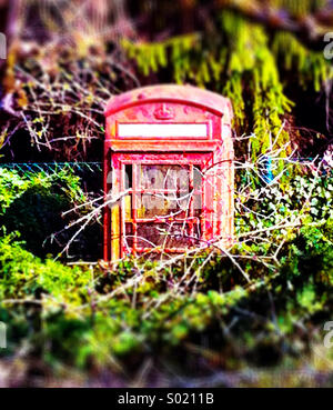 Old British phone box, now abandoned and overgrown - Stock Photo