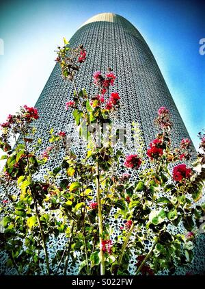 Wild flowers grow in front of ultra-modern building, Doha - Stock Photo