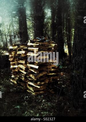 Woodpile outdoor, firewood - Stock Photo