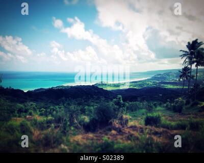 Barbados, St Lucy - Stock Photo