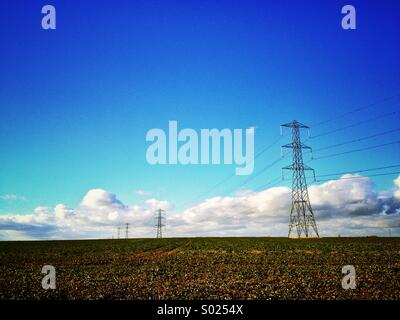 Electricity Pylons in field - Stock Photo
