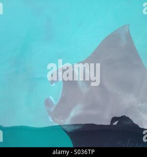 A Manta Ray surfacing under the boat at Sangalaki's diving site. - Stock Photo