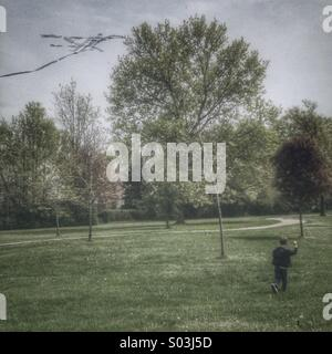 Boy flies a kite in the park. - Stock Photo