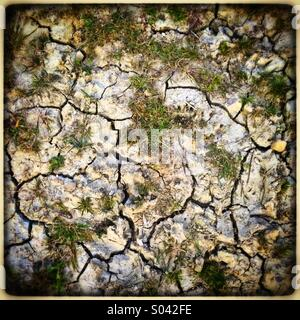 Cracked dry ground - Stock Photo