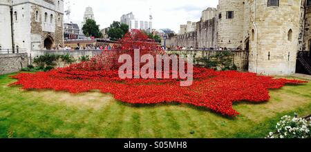 100 years after the start of World War 1, poppies are arranged around the Tower of London - Stock Photo